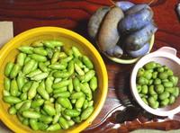 収穫16-10-02.jpg