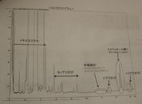 GAS-Cro12-06-01.jpg